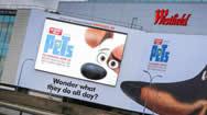 英国伦敦韦斯特菲尔德东侧外墙LED广告牌